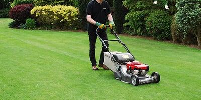 17.Lawnmowing.jpeg