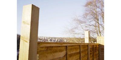 18.Fence.jpeg