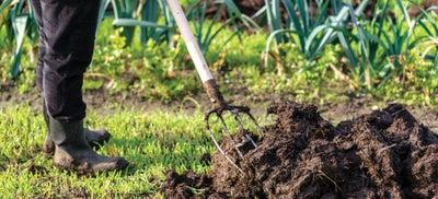 3.Digging_soil.jpeg