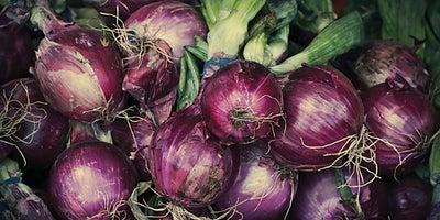 23.Planting_onions.jpeg