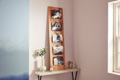 Picture mount