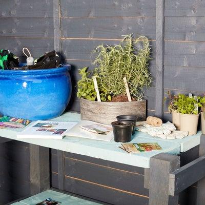 Planting_in_pots_desktop.jpeg