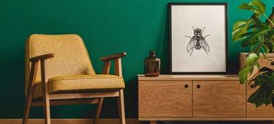 Living_room_paint_trend.jpeg