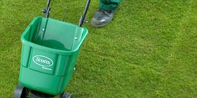 18.Maintaining-your-lawn.jpeg