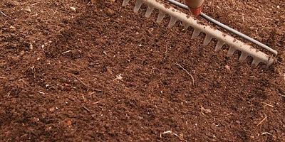 2.Raking_soil.jpeg