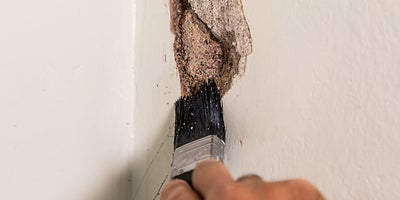 2.How-To-Repair-Walls-Patch-Plaster-2.jpeg