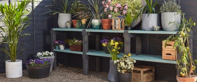1.Garden_Shelf.jpeg