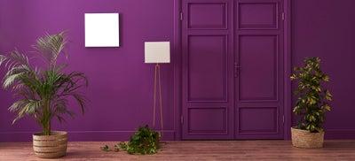 Bold_painted_walls.jpeg