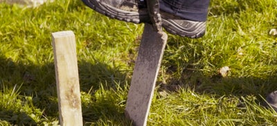 2.Shovel.jpeg