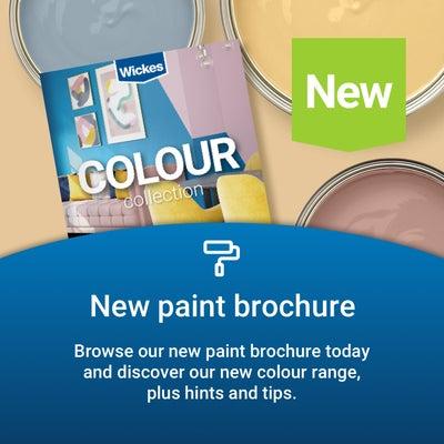 Homepage_footer010921-Paint-Brochure-.png