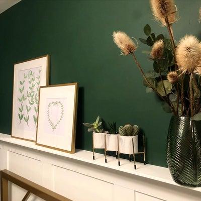 Estate-Green-Olapic.jpg