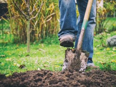 Foor_on_shovel_How-To-Garden-Calendar.jpeg