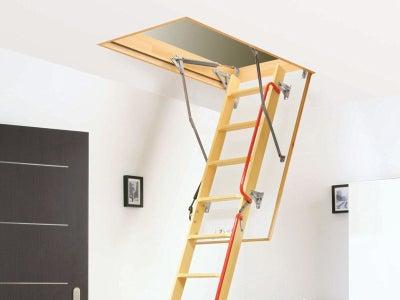 Loft_ladder.jpeg