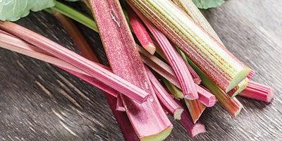 13.Rhubarb_plant.jpeg