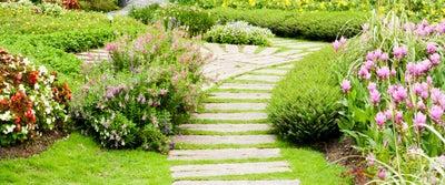 Step51_Pathway_in_Garden.jpeg