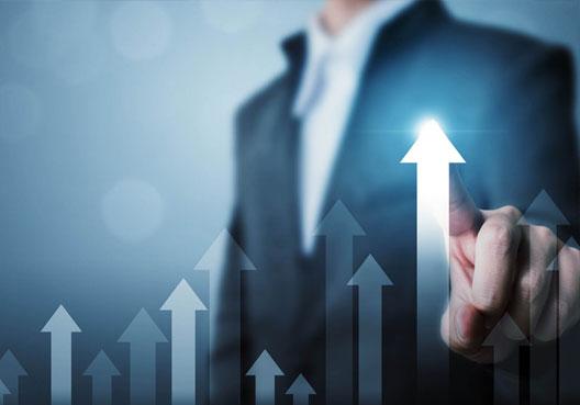 Hybrid Equity - Performance: