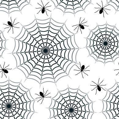 spider-4245934_HiRes.jpg