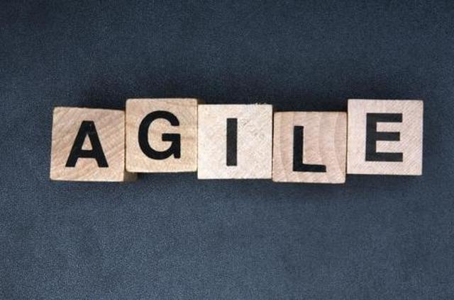 Embrace Agile