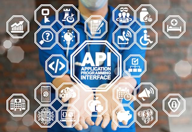 4. Use the API