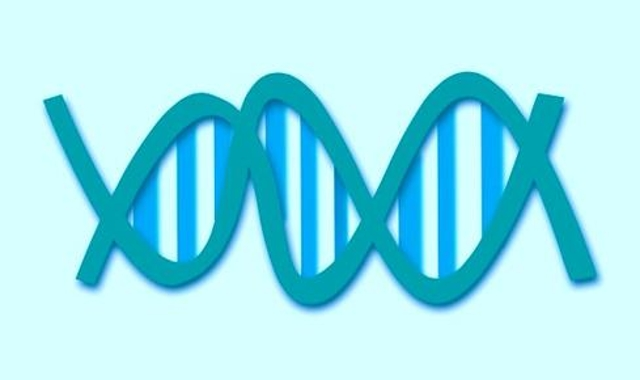 Sequencing the genome