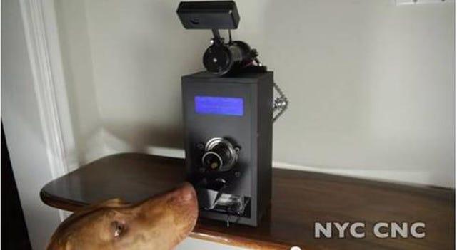 Dog Treat Dispensing Robot