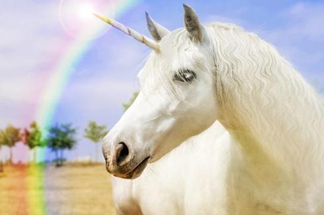 Stop Hunting Unicorns