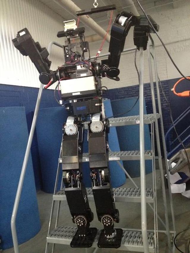 Open-architecture robot