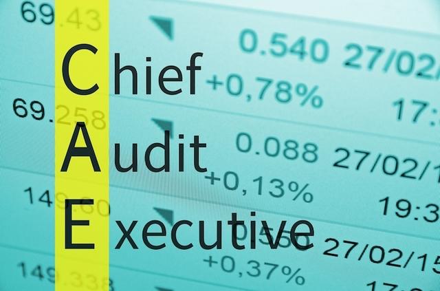Chief Audit Executive (CAE)