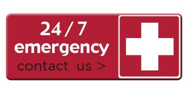 Step 4: Create a list of emergency contacts