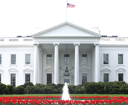 Where 2016 US Presidential Contenders Stand On Tech Issues