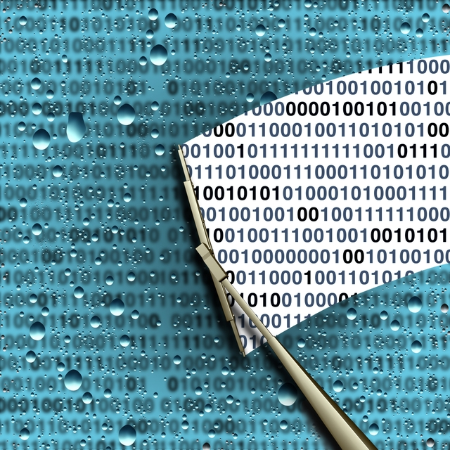 SSL Inspection and Traffic Decryption Still Not the Norm