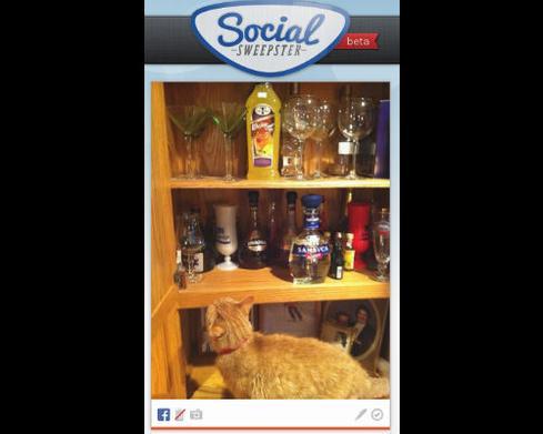 socialsweepster3.jpg