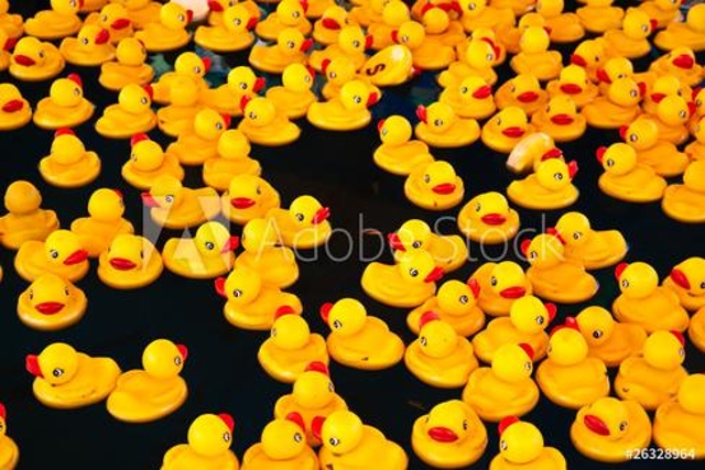 Rubber Ducky, You Make Bot Time Lots Of Fun