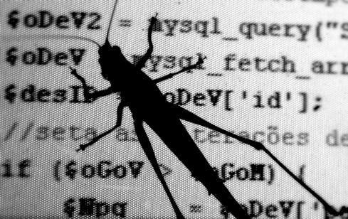 win-xp-bug.jpg