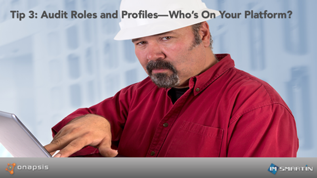 Tip 3: Audit Roles and Profiles