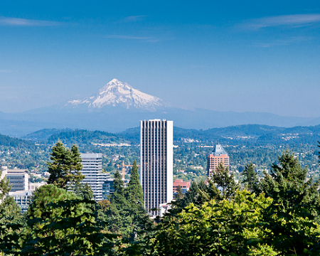 Silicon Forest Provides Fertile Ground For Startups