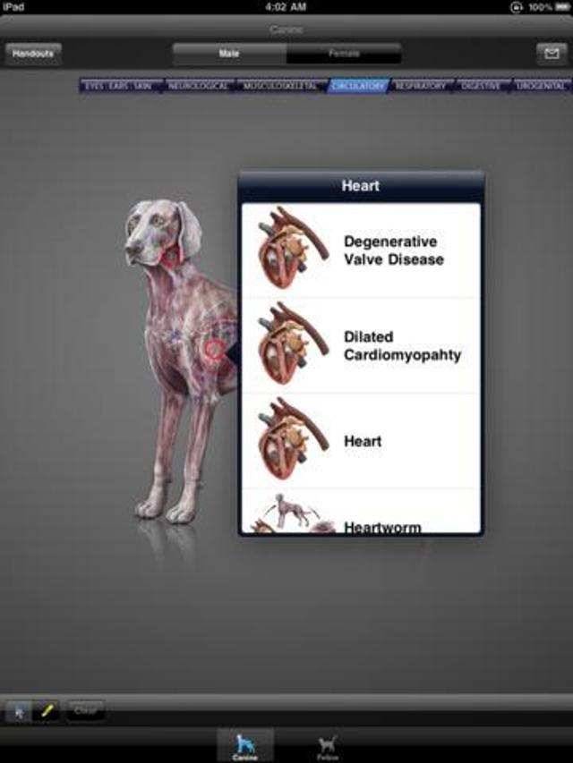 iDIA Diagnostics Is A Pet App For Vets ($399.99)
