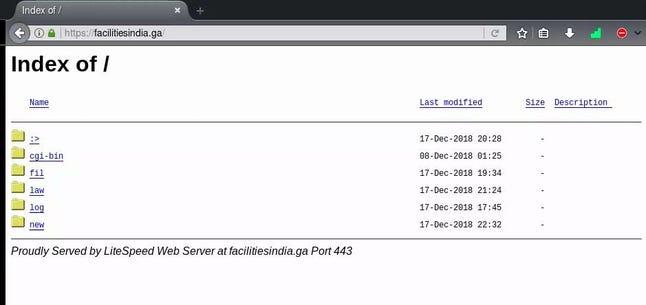lazyphish2-index.jpg