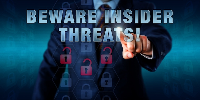 Identify what the company means by insider malicious risk.