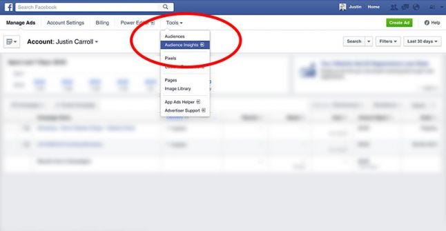 Facebook Advertising Audience Insights