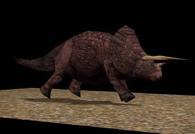 triceratops_medium.jpg