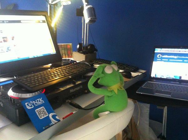 KermitComputerBug.jpg