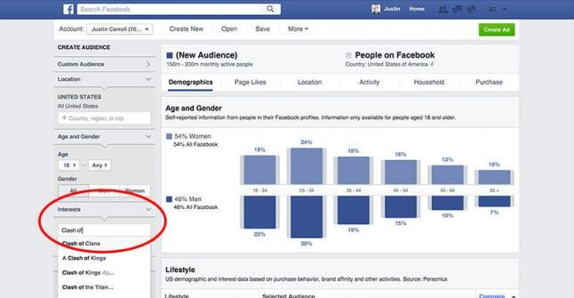 Facebook Advertising Audience Insights interest